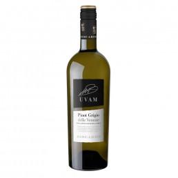 Pinot Grigio delle Venezia 2017, italiensk hvidvin på Pinot Grigio druen